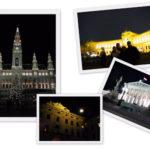 La Viena intre 2009 si 2010