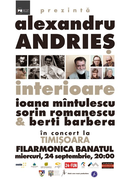 interioare alexandru andries