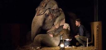 Apă pentru elefanți