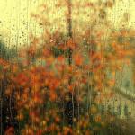 Aseară se pregătea să plouă, iar eu…