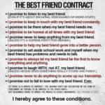 Contract de prietenie